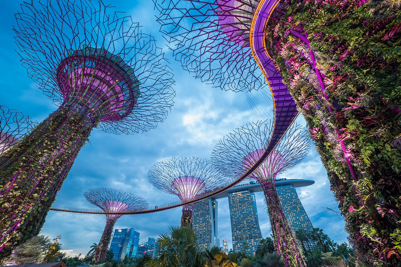 Internship-singapore-1